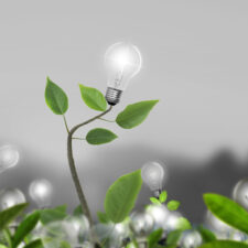Colavria's Core Principle: Innovation