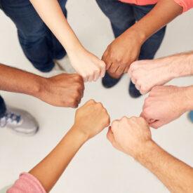 Colavria's Core Principle: Collaboration